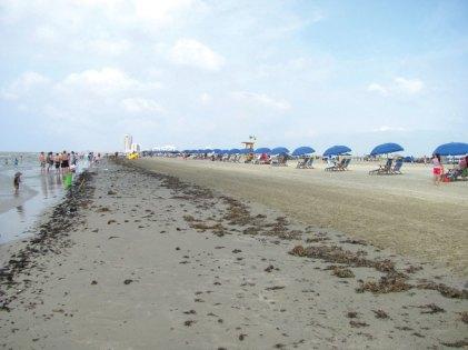 Beach on Galveston Island