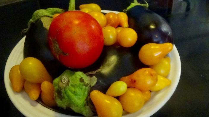 Eggplant and Tomato Harvest